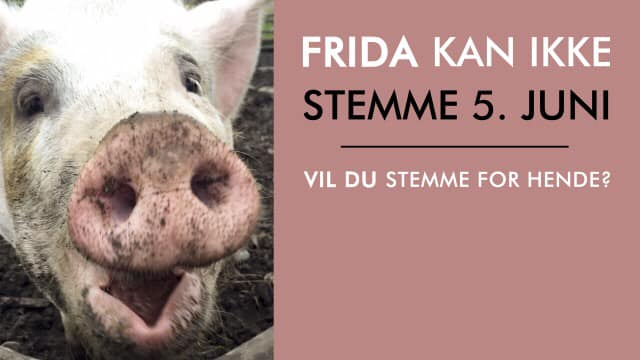 En stemme for Frida